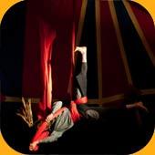 Spectacles Numéros de cirque pour cabaret